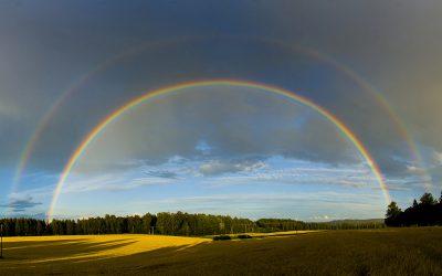 De droom van de regenboog
